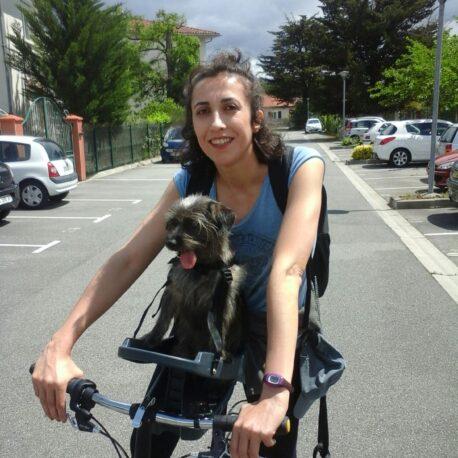 silla- de- bici -para- perro