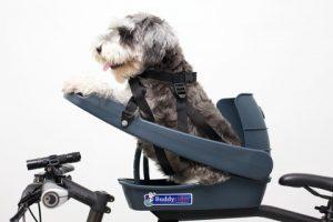 Asiento para llevar en bici a tu perro