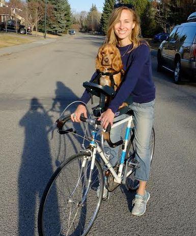 silla- de- bici -para- perro – pequeño