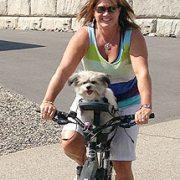 Silla de perro para bicicleta