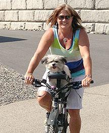 silla- de- bici -para- perro – whistiee