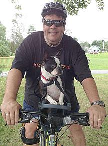 silla- de- bici -para- perro – bulldog- frances