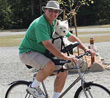 silla- de- bici -para- perros