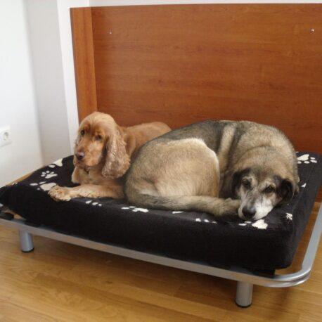 Somier para perros02