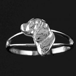 Anillo--plata-Beagle