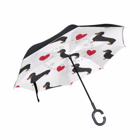 paraguas-doshond4