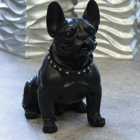 Bulldog francés Boy01