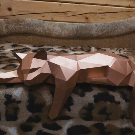 Gato tumbado02