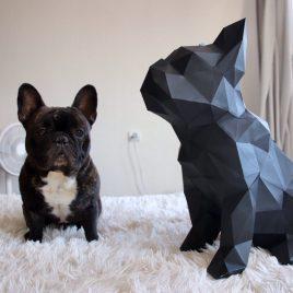 Bulldog Frances Sentado