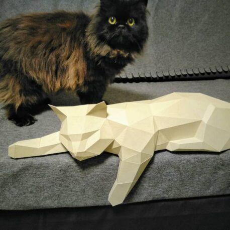 gato tumbado08