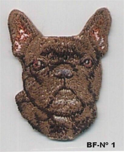 Bulldog Frances01