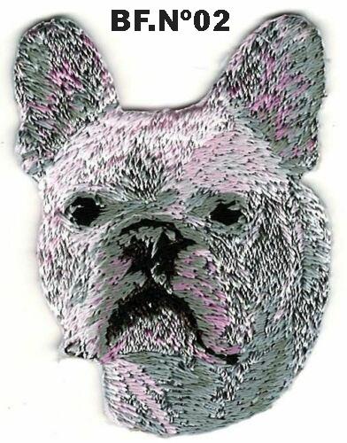 Bulldog Frances02